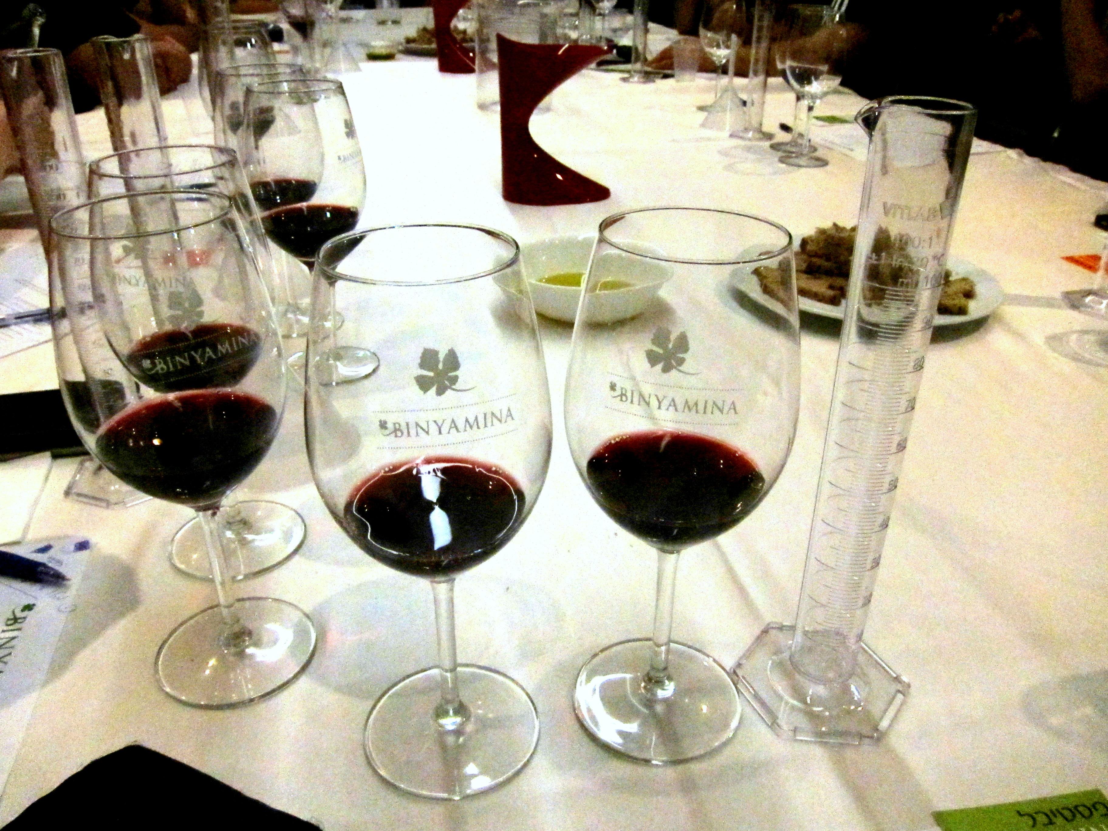 Начинаем работу, изучаем виноматериалы. Для работы у нас было Каберне Совиньон 2012 с Голанских высот (бочка 2010 года), Мерло-1 2012 (плато) бочка 2011, Мерло-2 2012 (склон) бочка 2008, Шираз 2013 и Петит Сира 2013.