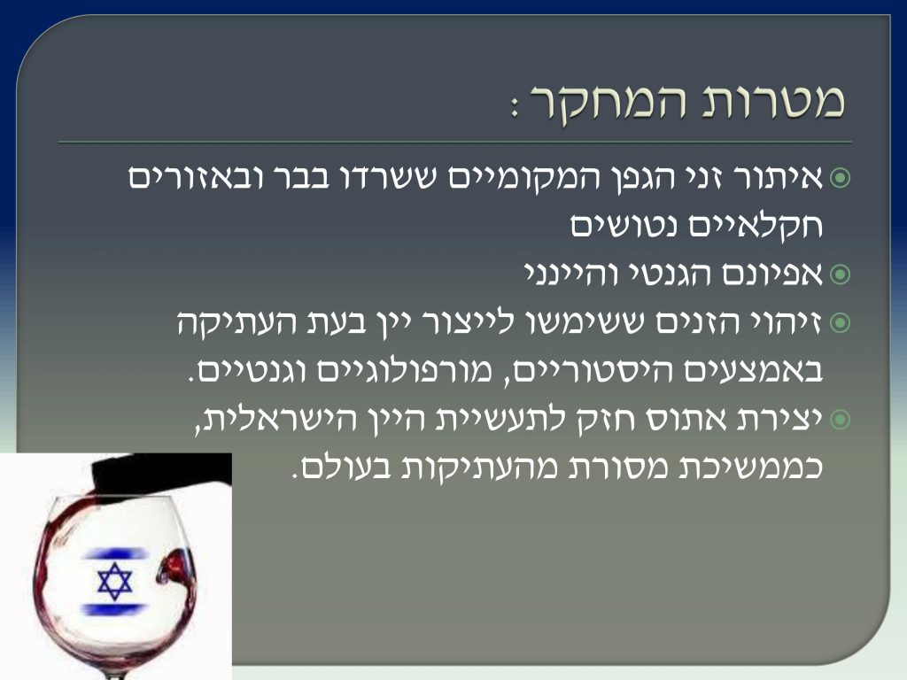 виноград Израиля, Дрори 5