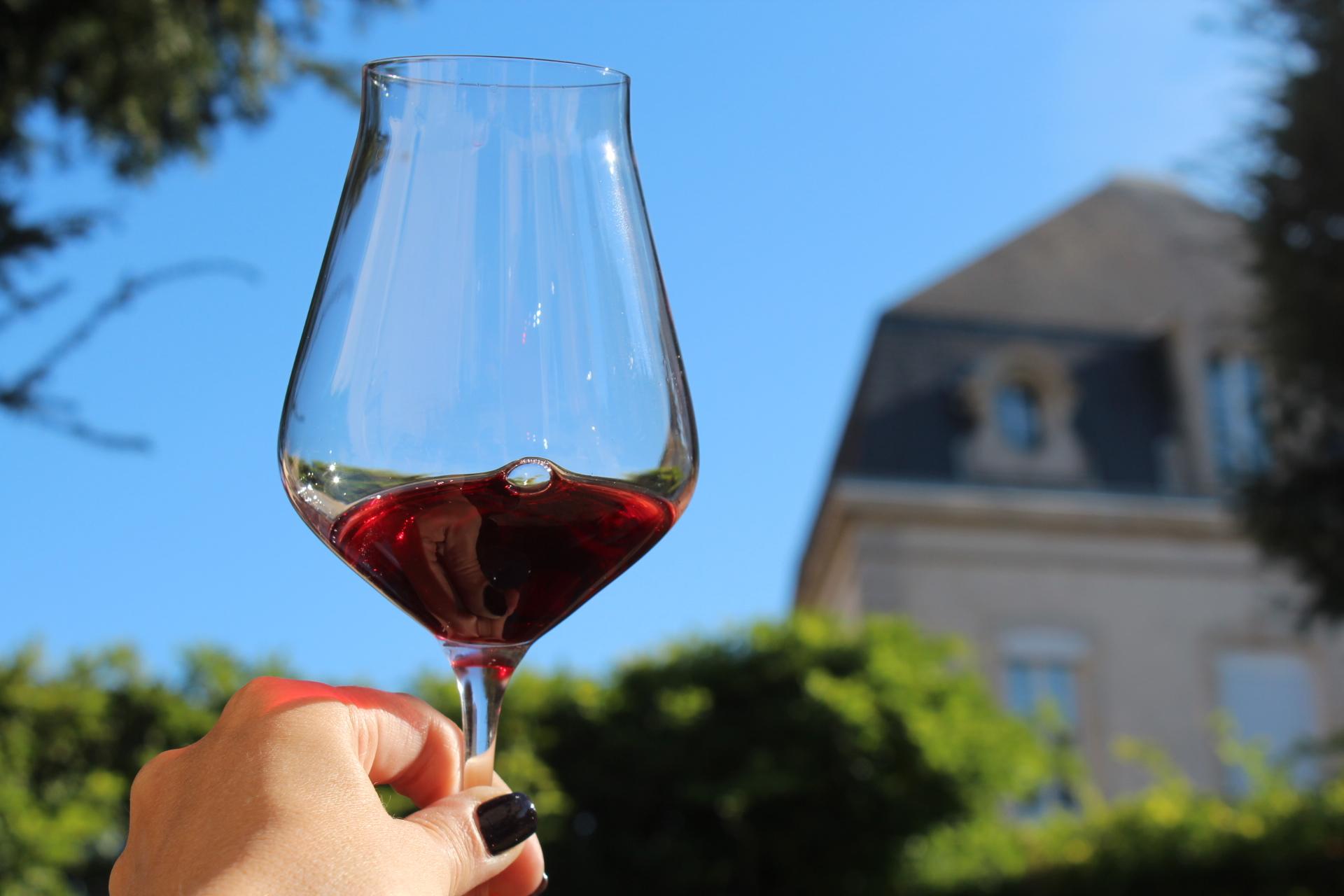 вино и еда сочетаются